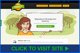 Captura de pantalla de A Small Orange homepage. Click image to visit site.